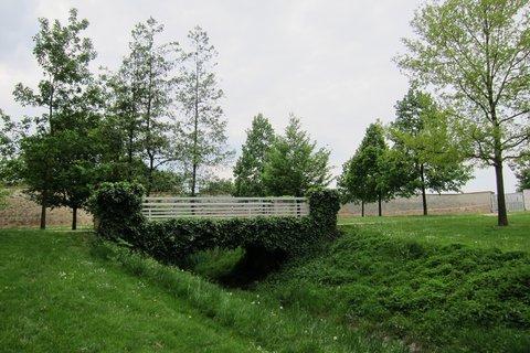 FOTKA - Ctěnice - zámecký park s lávkou obrostlou břečťanem