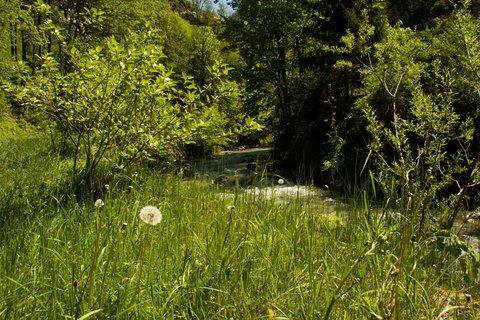 FOTKA - Seisenbergklamm - Cestou