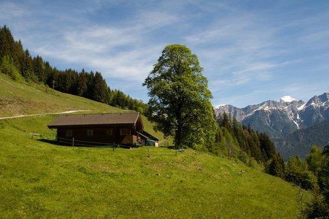 FOTKA - Biberg - Chatka na kopci