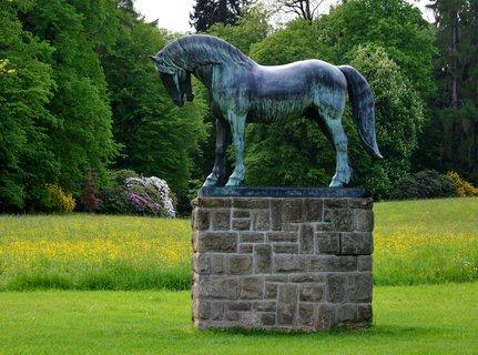 FOTKA - Slatiňanský kůň v jarní zeleni