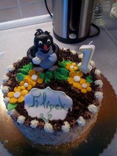 FOTKA - dort synovi k 1 roku
