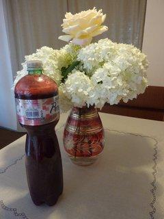 FOTKA - malinový sirup s kyticí