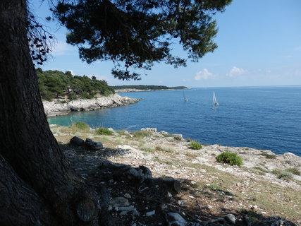FOTKA - na pobřeží Istrie...
