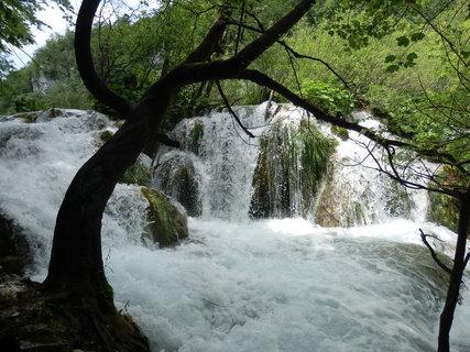 FOTKA - Plitvice * strom nad vodou