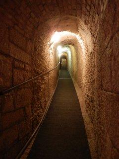 FOTKA - mořské akvárium v Pule je umístěno v jedné z pevností