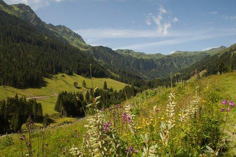 FOTKA - Na konci údoli Saalbach-Hinterglemmu - Pohled ke konci údolí