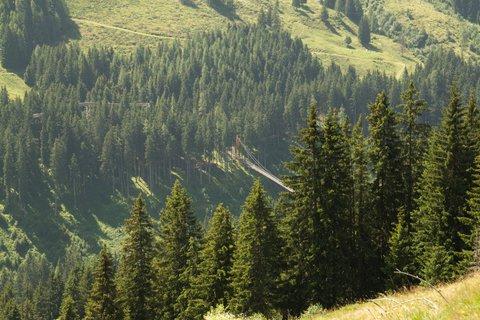 FOTKA - Na konci údoli Saalbach-Hinterglemmu - Pohled z kopce na alpský most Golden Gate