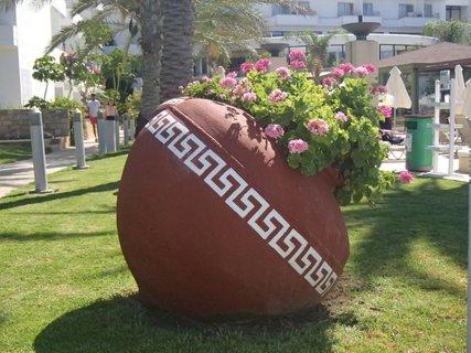 FOTKA - Cyprus - ozdoba trávnatej plochy