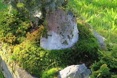 FOTKA - Kámen na zahradě
