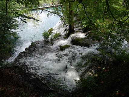 FOTKA - skoro to vypadá jako uměle vypouštěná voda do lesa....
