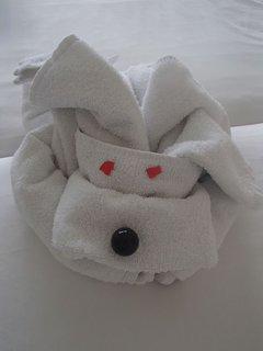 FOTKA - Sentido Cypria Bay - tento psík z uterákov sa mi páčil :)
