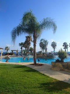 FOTKA - Sentido Cypria Bay - jedna z paliem pri bazéne