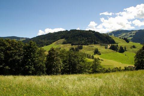 FOTKA - Výšlap ke Kronreith, Maria Alm - Pohled na protější kopec