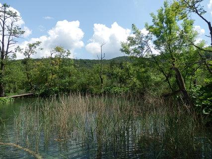 FOTKA - zarůstající jezírko (Chorvatsko - Plitvická jezera)