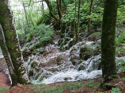 FOTKA - občas to vypadá, jako by vypustili vodu do lesa (Chorvatsko - Plitvická jezera)