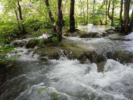 FOTKA - občas to vypadá, jako by záměrně vypustili vodu do lesa (Chorvatsko - Plitvická jezera)