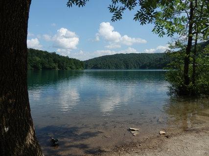 FOTKA - Plitvická jezera a ryby na mělčině