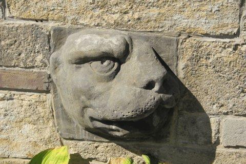 FOTKA - Z procházky - Zahrada Na Valech: Fragment lví hlavy pod Bellevue