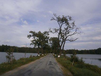 FOTKA - Cesta mezi rybníky
