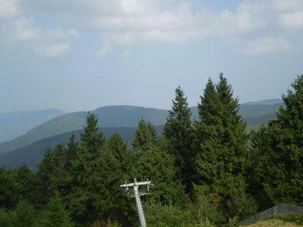 FOTKA - Vrcholky stromů a hor