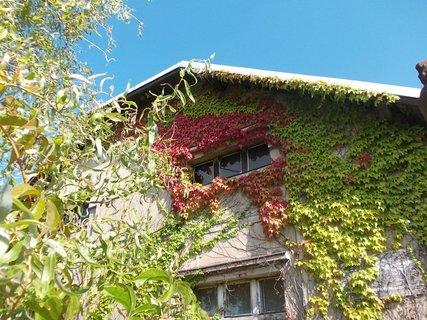 FOTKA - podzimní ozdoba na domě
