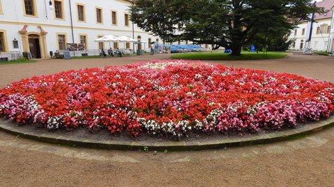 FOTKA - květiny na nádvoří