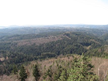 FOTKA - České Švýcarsko les