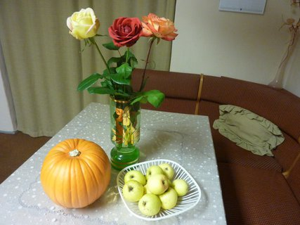 FOTKA - dýně, jadrničky a růže