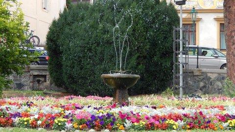 FOTKA - květinový záhon s vodotryskem