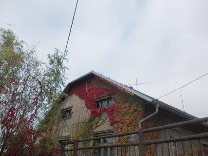 FOTKA - podzim na domě s nebem nehezkým
