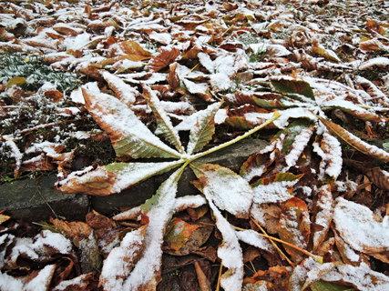 FOTKA - podzimně-zimní nálada