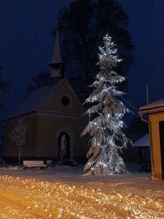 FOTKA - Včerejší mokrý těžký sníh nám udělal z vánočního stromu nudli :-)