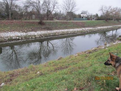 FOTKA - Hladina vody se snížila