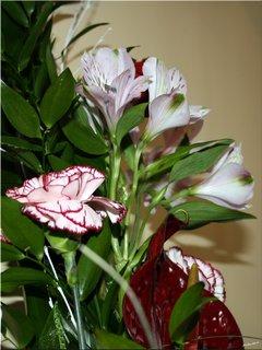 FOTKA - Kvety na oslavu
