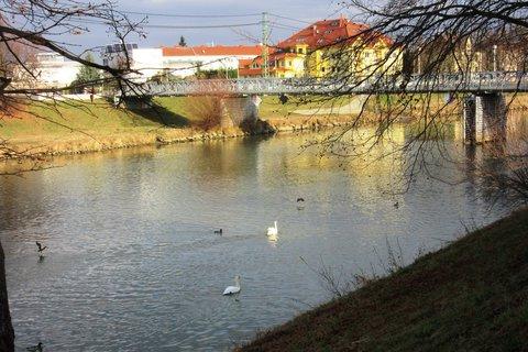 FOTKA - včera foceno u řeky