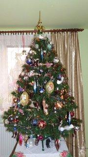 FOTKA - Vánoční stromečky