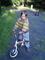 verunka na kole