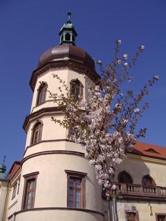 FOTKA - Kostelec nad Černými Lesy, zámek