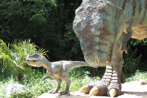 FOTKA - Dino park 1