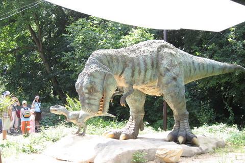 FOTKA - Dinopark..3
