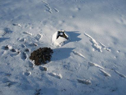 FOTKA - Krtek a zima