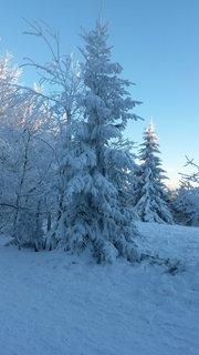 FOTKA - Kouzlo zimy