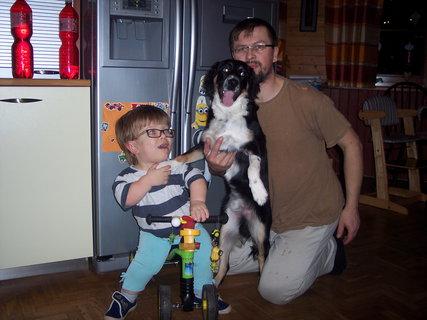 FOTKA - Štěně zase vyrostlo