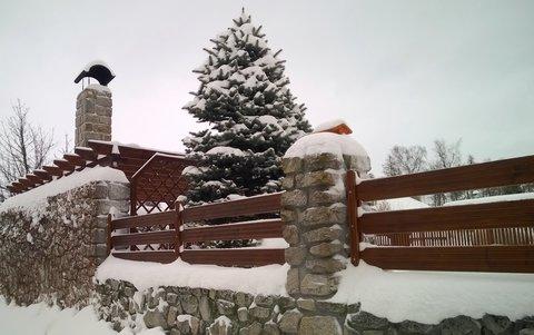 FOTKA - pod sněhovou přikrývkou