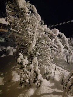 FOTKA - v noci 13.1.17