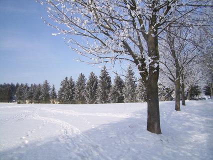 FOTKA - V čerstvém sněhu čerstvé stopy