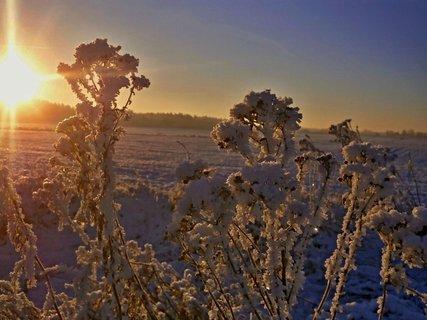 FOTKA - Zimní....