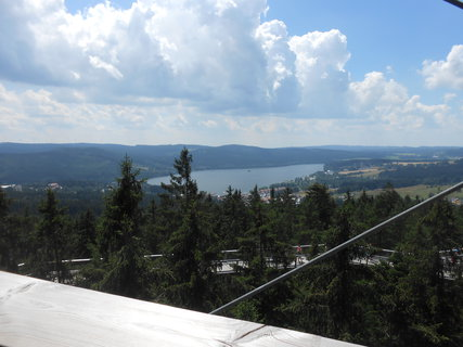 FOTKA - Stezka korunami stromů - pohled dolů