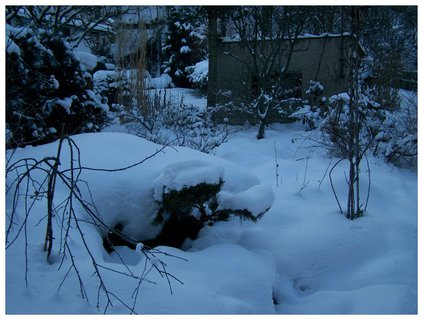FOTKA - zahrada je už měsíc zasypaná, až to hezké není