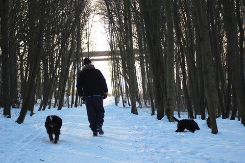 FOTKA - procházka do lesoparku